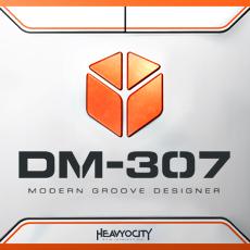 HDM307